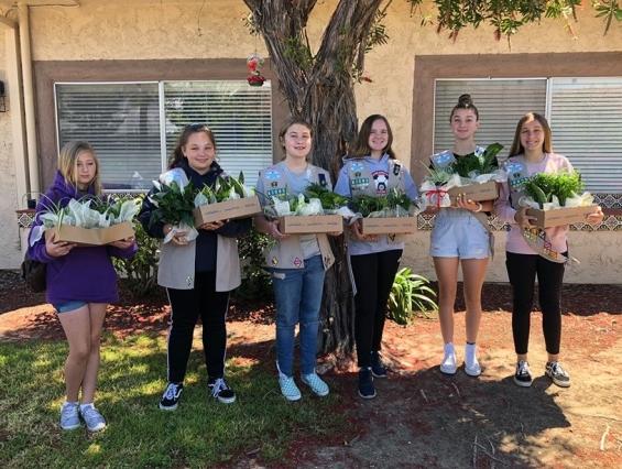 plant donation May 2019